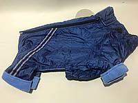 Комбинезон для собак на флисе размер 2,5 синий