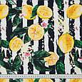 Декоративна тканина панама лимон / lemons чорний , жовтий, фото 3
