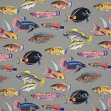Дралон принт вардо/vardo с рыбками цветными, водоотталкивающая ткань для штор для ванной и бассейнов