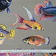 Дралон принт вардо/vardo фон т. беж,кольорові рибки, фото 3
