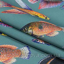 Дралон принт вардо/vardo фон серо-голубой,рыбки цветные