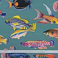 Дралон принт вардо/vardo фон сіро-блакитний,кольорові рибки, фото 3