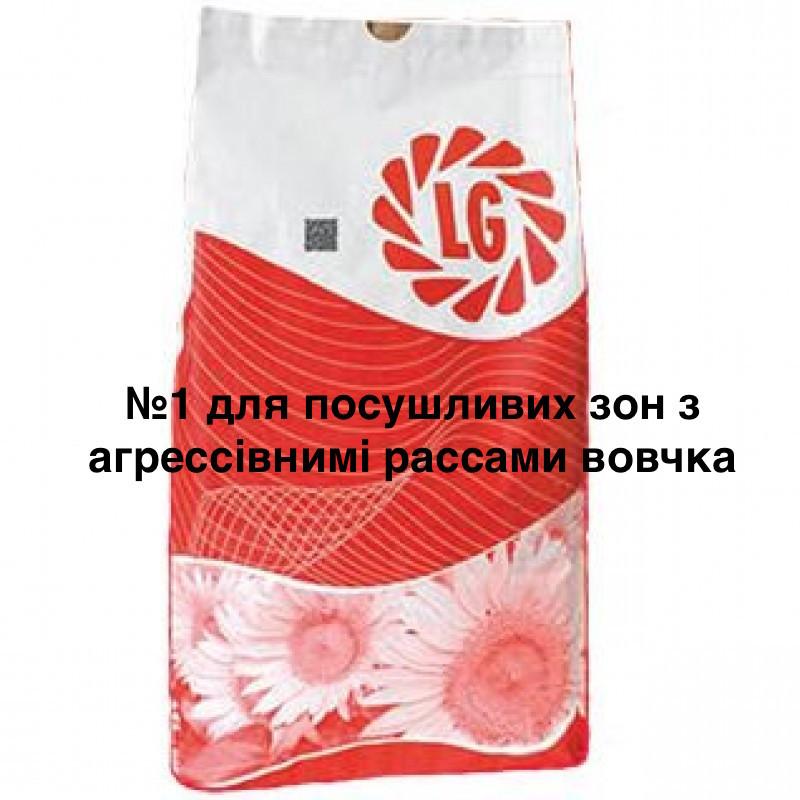 Семена подсолнечника ЛГ 59580 (LG 59580)