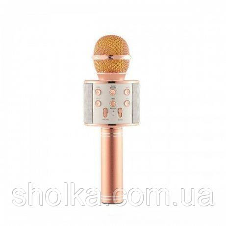 Микрофон WS-858 Wster Rose