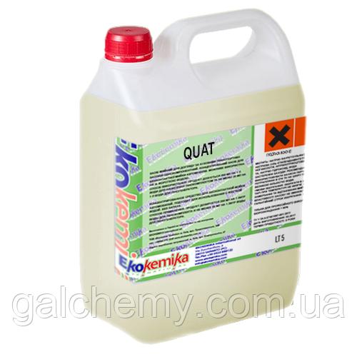 Универсальное антибактериальное моющее средство Quat 5 л