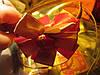 Обруч на голову заколка красный с золотом атлас, фото 4