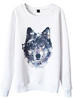 Женский стильный свитшот с принтом Wolf  (женские кофты, кофточки, толстовки и регланы, свитера и кардиганы)