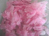 Перья цветные розовые (размер упаковки 20Х11 см) 30/25 (цена за 1 шт. + 5 гр.)