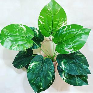 Искусственный,декоративный куст-филодендрон., фото 2