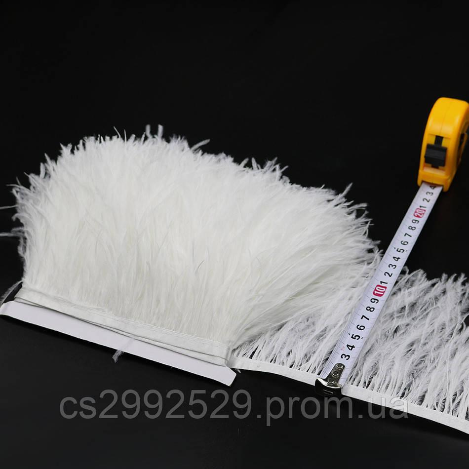 Перо страуса (10м)белый