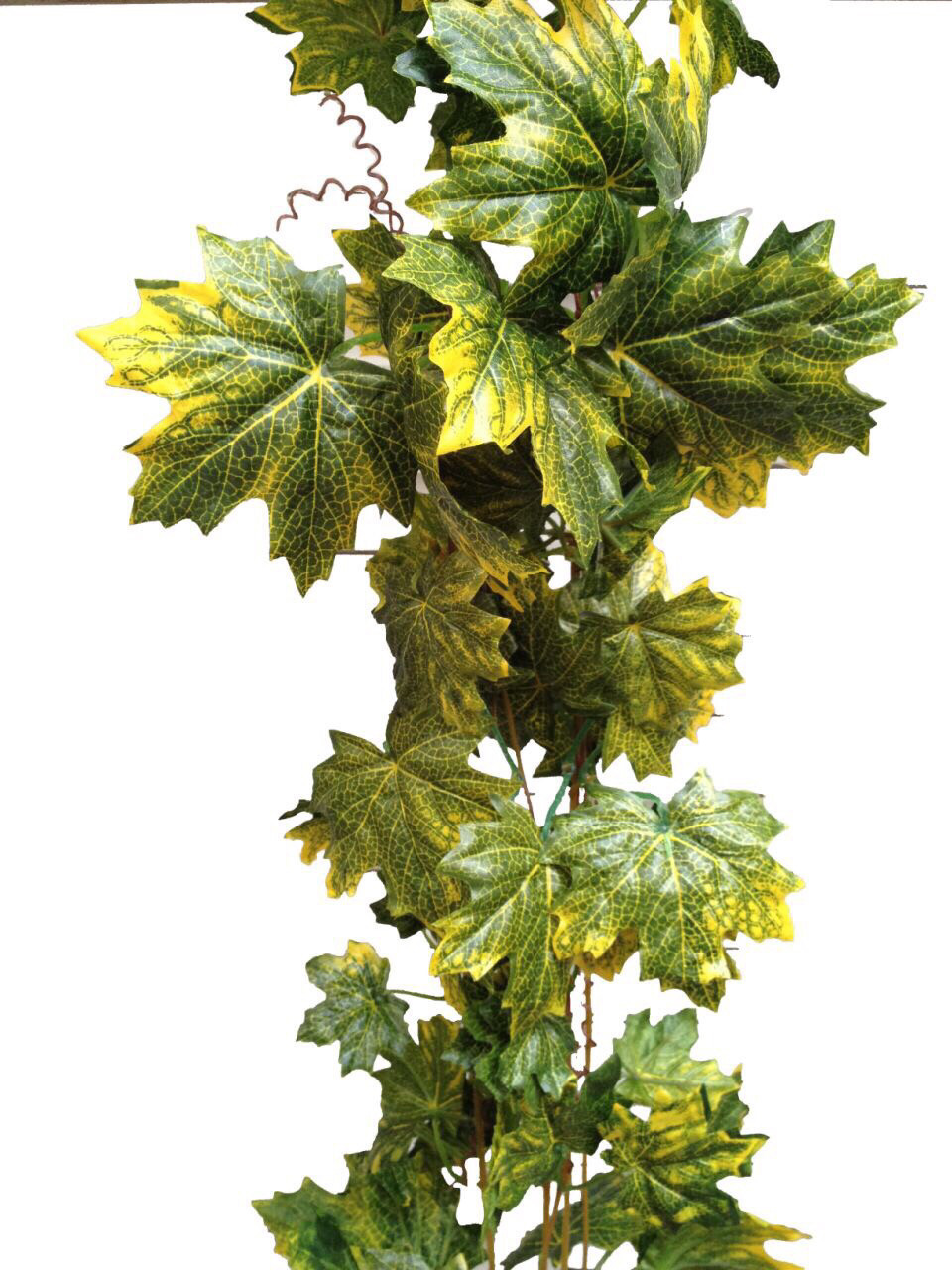 Лиана искусственная с кленовыми листьями.