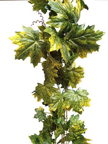 Лиана искусственная с кленовыми листьями., фото 2