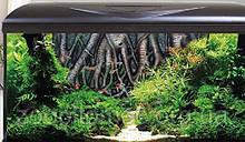 Акваріум Croci (Кроучи) AMTRA SYSTEM 80 фон коріння, 85 л (білий/чорний)