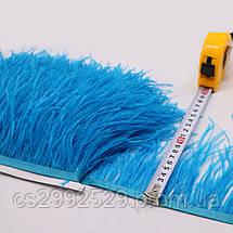 Перо страуса (10м)синий, фото 2