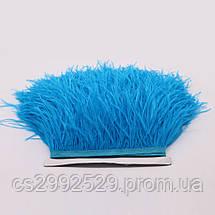 Перо страуса (10м)синий, фото 3
