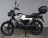 Мотоцикл FORTE ALFA NEW FT125-K9A black (черный)  (Форте Альфа нью 125 куб. см.), фото 2