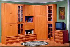 Модульні меблі Морріс вільха Світ Меблів