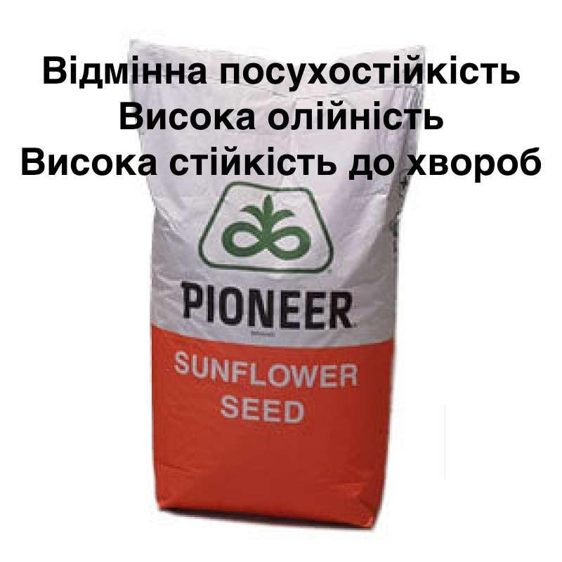 Семена подсолнечника PIONEER P63LL06 (П63ЛЛ06) Круизер