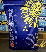 Семена подсолнечника, Maisadour, MAS 87 А