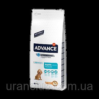 Advance (Эдванс) Dog Medium Puppy - корм для щенков средних пород (с курицей и рисом)18кг