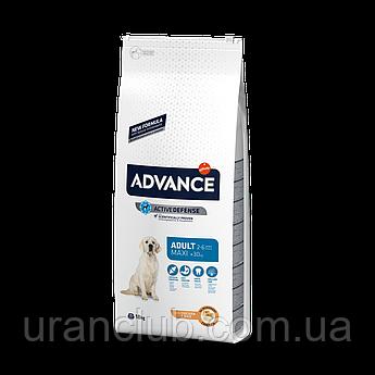 Advance(Эдванс) Dog Maxi Adult 18кг - корм для взрослых собак крупных пород