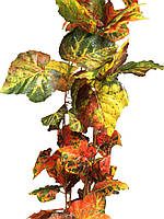 Лиана искусственная.Осенняя виноградная лиана.