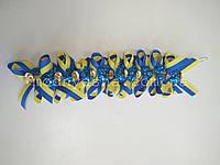 Незабудка синьо-жовта