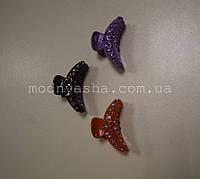 Краб кольоровий з камінцями