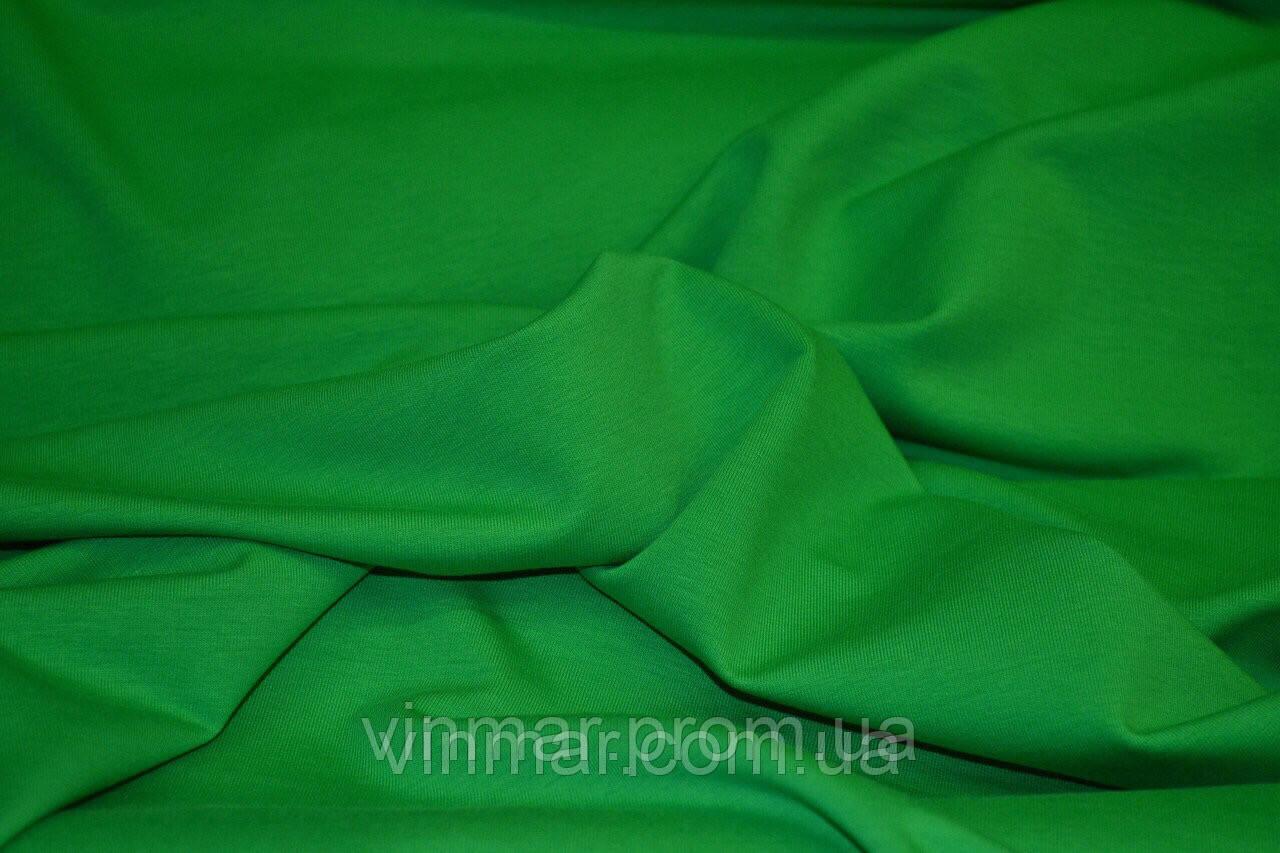 Двунитка зелёная