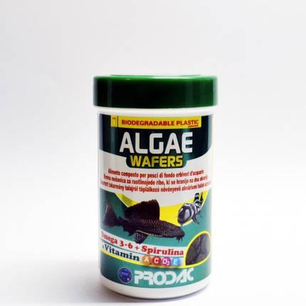 Prodac Algae Wafers (50g), фото 2