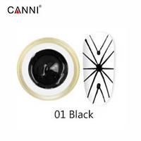 Гель-паутинка №1, черный   3D Spider gel Canni