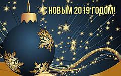 С Новым 2019 Годом и Рождеством Христовым!