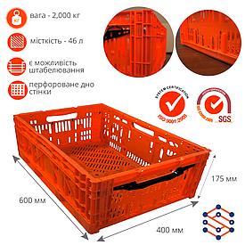 Складной полимерный ящик для овощей и фруктов красный 600х400х175 мм
