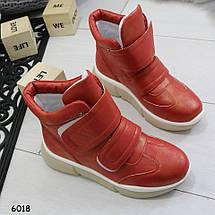 Ботинки деми 6018 (SH), фото 3