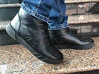 Зимние ботинки в стиле Philipp Plein кожаные на меху , фото 1