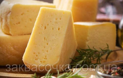 Закваска+фермент для сыра РОССИЙСКИЙ