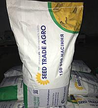 Семена подсолнечника НС-Х-7370 (2019год экстра)