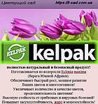 Келпак – помічник квітникаря!