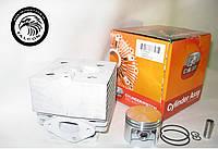 Цилиндр с поршнем Stihl SR 340, SR 420 (42030201200, 42030201201, 42030302001) для опрыскивателя, серия PROFI, фото 1