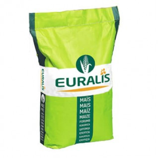 Семена кукурузы Euralis Фарадей Пончо