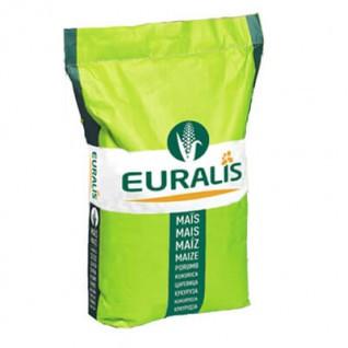 Семена кукурузы Euralis Сенсор Пончо