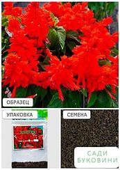 Сальвия блестящая красная (Зипер) ТМ 'Весна' 1г