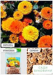 Календула махровая (Зипер) ТМ 'Весна' 2г