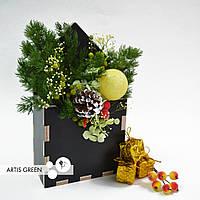 """Подарок фито-конвертик ручной работы из стабилизированных растений """"Artis Green"""""""