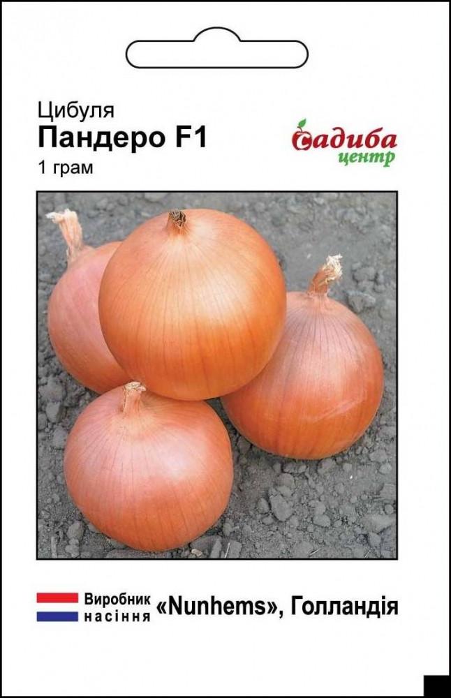 Пандеро F1 (1г) Насіння цибулі Садиба Центр