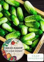 Мидл-набор овощей 'Огуречный полигон' 'Богатый фермер' (в коробке) ТМ 'Весна' 30уп