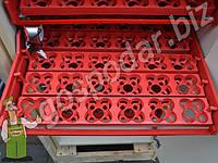 Инкубатор для перепелов на 720 перепелиных, или 180 гусиных, 180 куриных яиц, в комплекте с выводными лотками