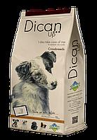 Сухой корм Dican Up Crossbreeds (для взрослых собак с нормальной и сниженной активностью) 4кг