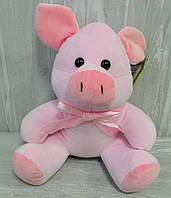 М'яка іграшка поросятко Роуз 21 см Мягкая игрушка поросенок Роуз