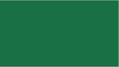 Oracal 751 604 Gloss Cactus Green 1 m (Кактусово-зеленая глянцевая пленка)